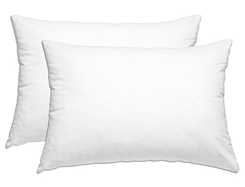 Smart Home Bedding Super Plush Pillow Dust Mite Resistant Down Alternative Queen/Standard, 2 Pack