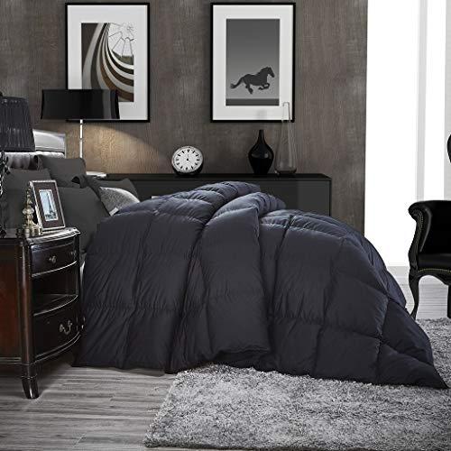 Luxurious All Season Goose Down Comforter Queen Size Duvet Insert