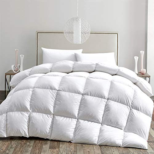 HOMBYS Luxurious All Seasons Down Comforter and Goose Feather Duvet Insert Queen Size Hypo-allergenic 50oz Fill Weight 100% Cotton Cover Down Proof with Corner Tabs-White Down ComforterQueen,White