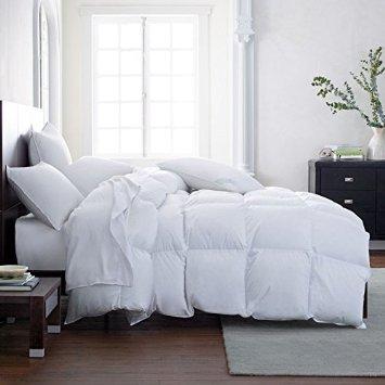 Lavish Comforts The Ultimate Winter Comforter Hotel Luxury Down Alternative Comforter Duvet Insert with Tabs Washable and Hypoallergenic Queen