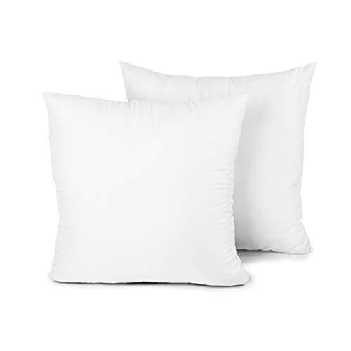 Edow Throw Pillow Insert, Set of 2 Hypoallergenic Down Alternative Polyester Square Form Decorative Pillow, Cushion,Sham Stuffer. White, 18×18