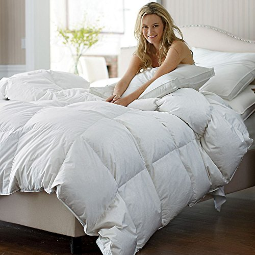 C&W Luxurious Siberian White Goose Down Comforter Queen Size Duvet Insert Heavywarmth Winter 1200 Thread Count Egyptian Cotton Cover 750 Fill Power 50 oz Fill Weight White Solid