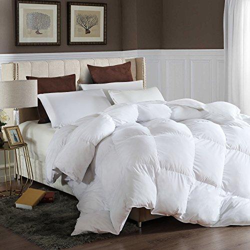 LESNNCIER Twin Down Alternative Comforter Duvet Insert All Seasons Ultra Plush Microfiber Fill Goose Down Alternative Comforter Machine Washable