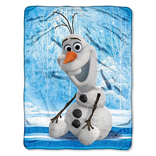 "Disney's Frozen, ""Chills and Thrills"" Micro Raschel Throw Blanket, 46″ x 60″, Multi Color"