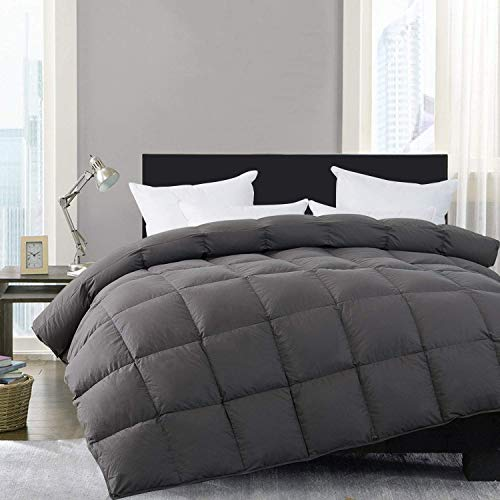 HOMBYS Goose Down Comforter King Size Duvet Insert All Season Down Comforter Oversized King 120×98 inches 100% Cotton Cover Down Proof with 8 TabPalatial King-120×98,Gray- Down Comforter