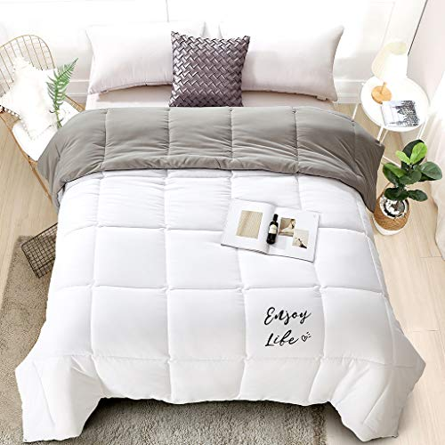 LANGRIA Reversible Down Alternative Comforter 300 GSM All-Season Grey/White Quilted Duvet Insert with Corner Tab, Sewn-Through Box-Stitching Brushed Shell Cover Soft and Comfy, Twin