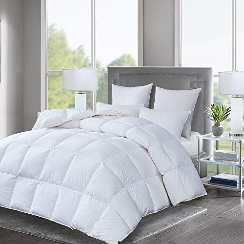 Luxurious All Seasons Goose Down Comforter, Duvet Insert Solid White, 750+ Fill Power, 28oz, 1000 Thread Count, 100% Cotton Shell Hypo-allergenic Down Proof with Tabs Queen, White