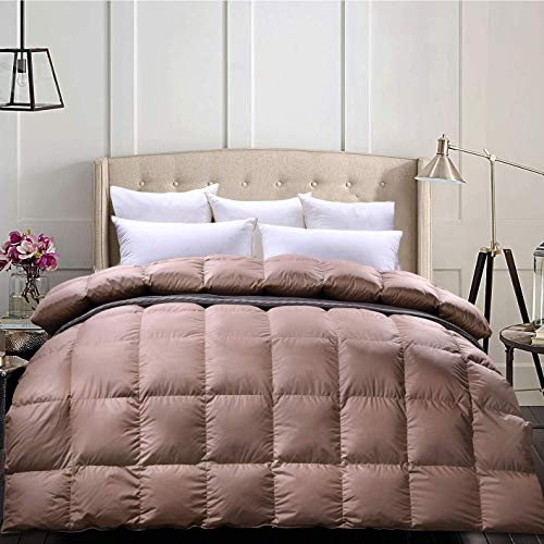 C&W Luxurious Siberian Goose Down Comforter Queen Size Duvet Insert-1200TC Cover,750 Fill Power 50oz Fill Weight Fluffy Warmth for Winter Full/Queen, Brown