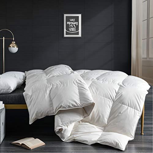 APSMILE 100% Organic Cotton Goose Down Comforter Queen Size – All Seasons 750FP Medium Weight Luxurious Duvet Insert, Ivory White