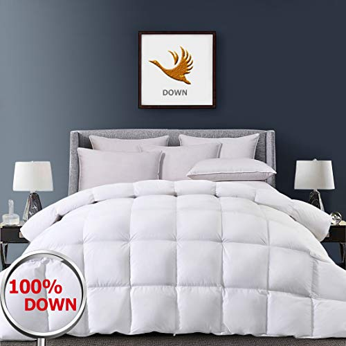 Fraylon Down Comforter King Size for All Season with 1800 TC 100% Egyptian Cotton Shell, 750+ Fill Power White Fluffy Alternative Duvet Insert 45oz